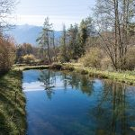Teich Mieminger Plateau Mountains Tirol Herbst autumn - Michael Deutschmann, Akad. Mentalcoach - Photography - Mentalcoaching Hypnose Seminare - Mental Austria
