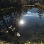 Teich Sonne Mieminger Plateau Mountains Tirol Herbst autumn - Michael Deutschmann, Akad. Mentalcoach - Photography - Mentalcoaching Hypnose Seminare - Mental Austria