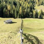 Obernberger See Almwiese Holzzaun Berge Mountains Tirol Herbst autumn - Michael Deutschmann, Akad. Mentalcoach - Photography - Mentalcoaching Hypnose Seminare - Mental Austria