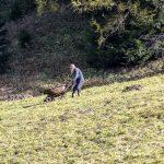 Obernberger See Bauer beim Mist ausführen - Tirol Herbst autumn - Michael Deutschmann, Akad. Mentalcoach - Photography - Mentalcoaching Hypnose Seminare - Mental Austria